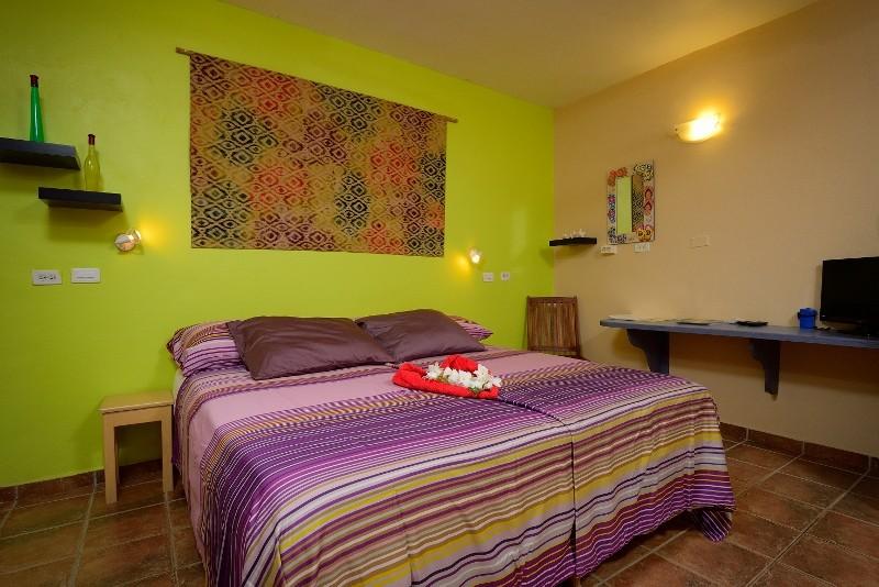 1-Schlafzimmer Apartment B