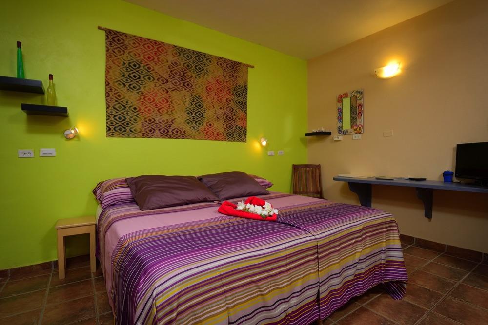 1-Schlafzimmer Apartment C